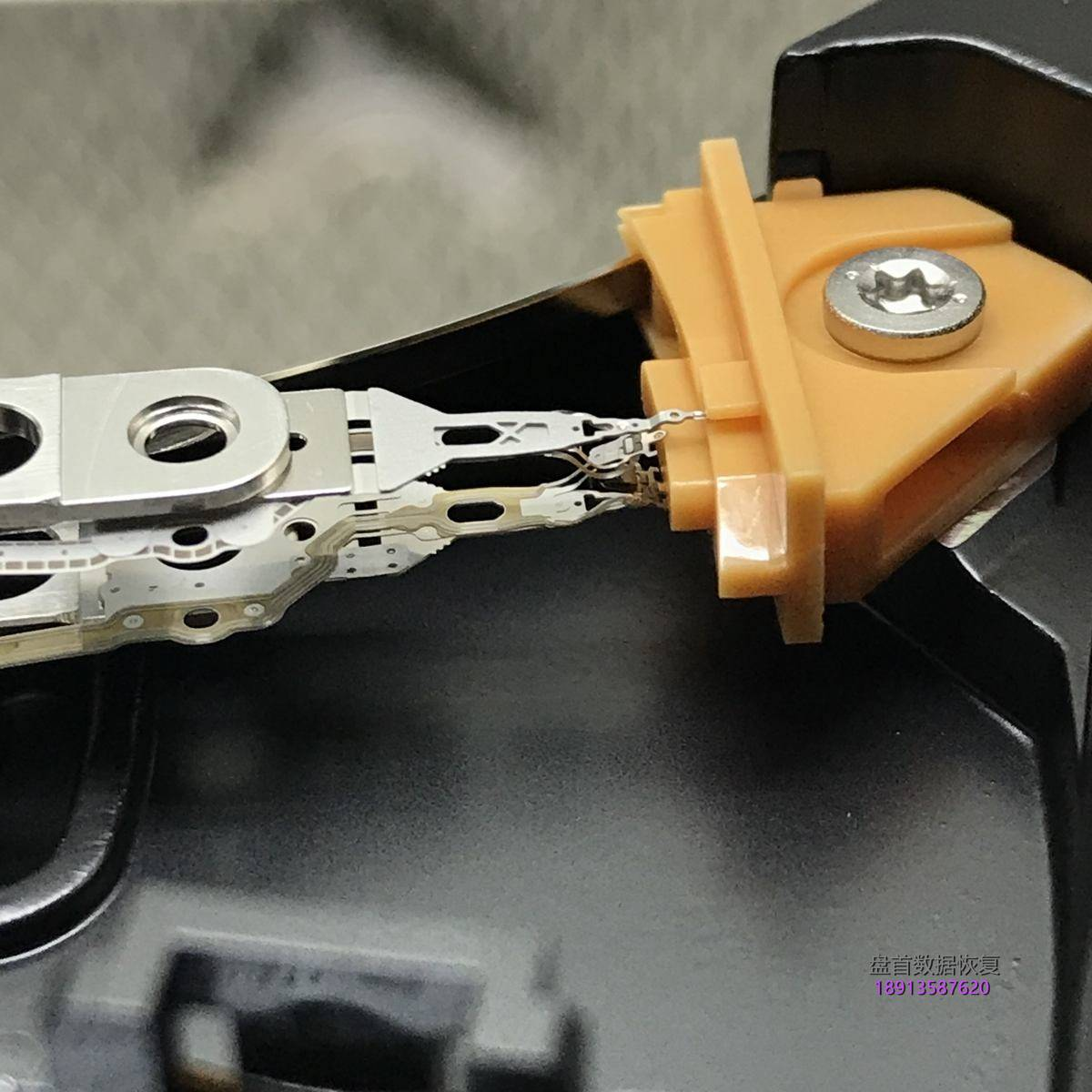 WD5000AAKX-001CA0硬盘磁头损坏敲盘异响